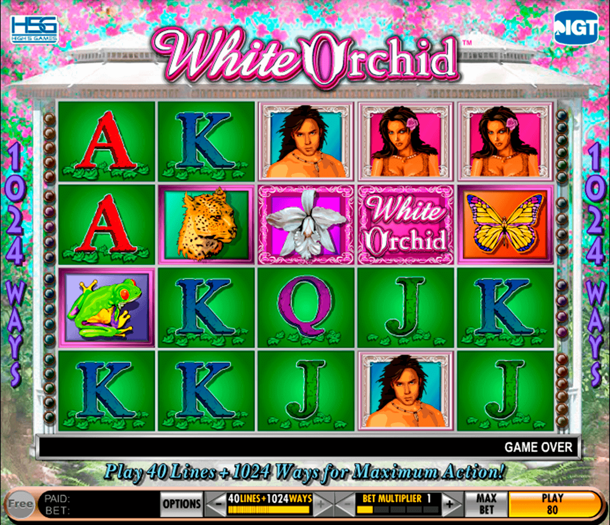 Spil100kr gratis Sloty casino Lage